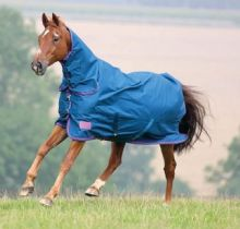 SHIRES LIGHT COMBO TURNOUT RUG  - 6 3 - RRP £59.99 (1)